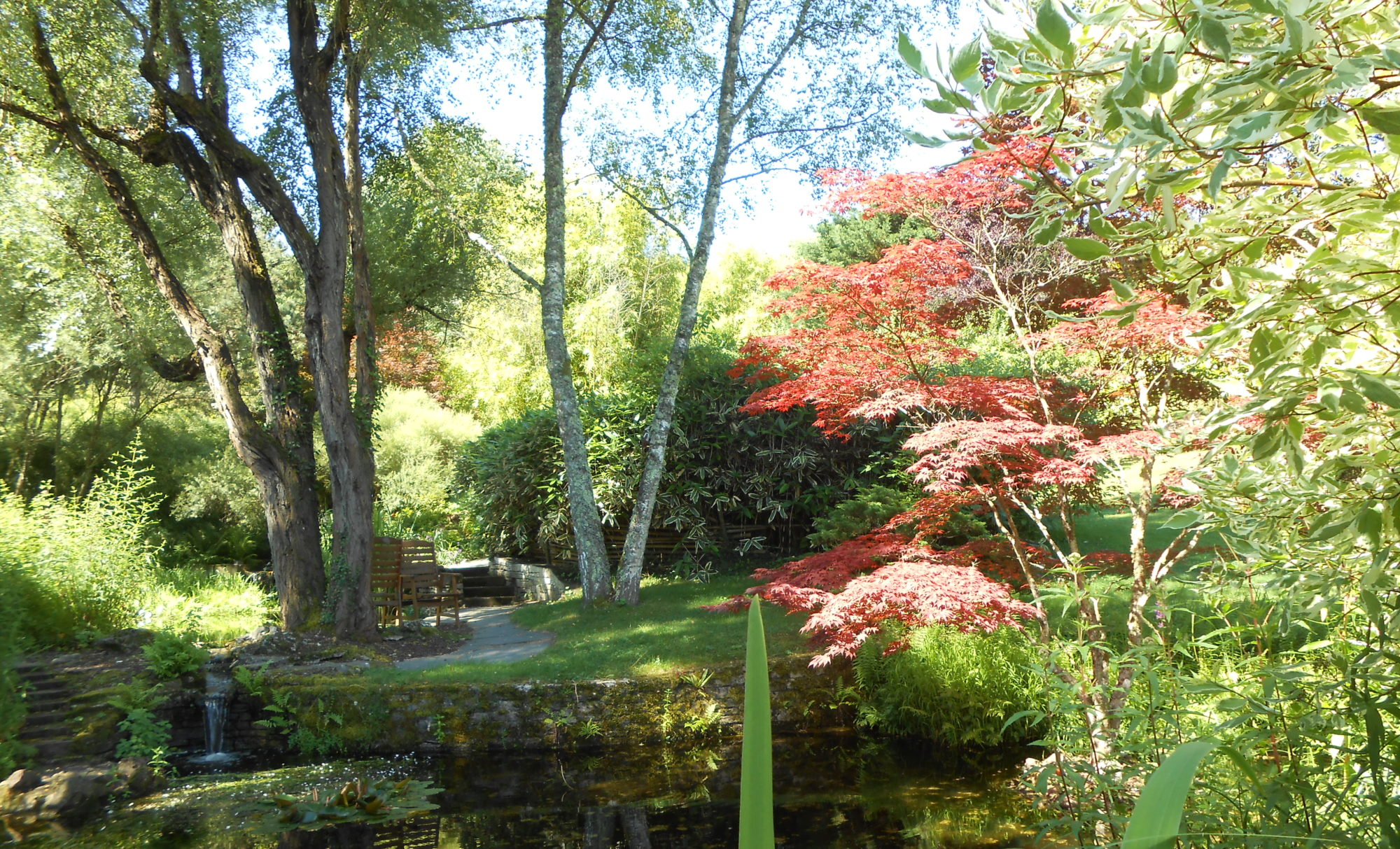 Acanthe association comtoise des amis des jardins for Jardinerie des jardins