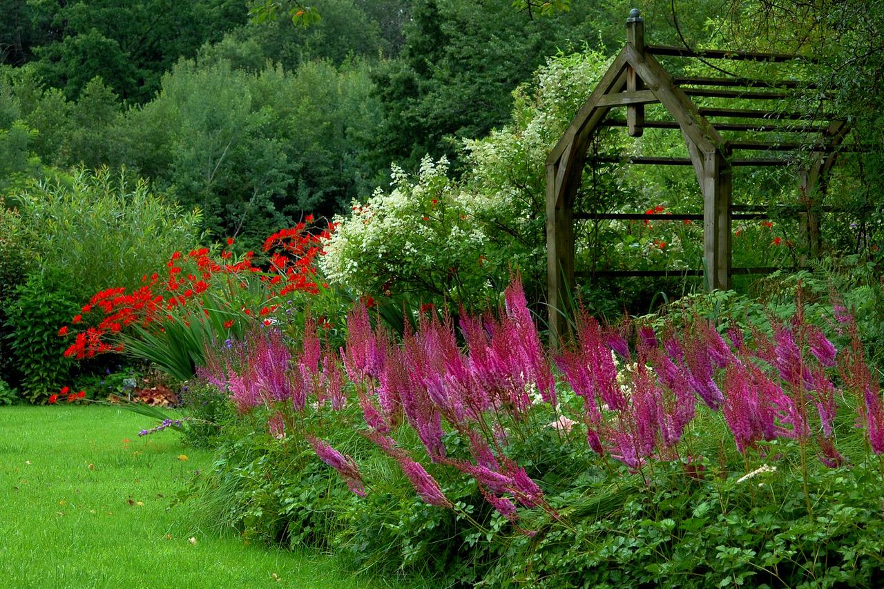 Jardin des rouges vis