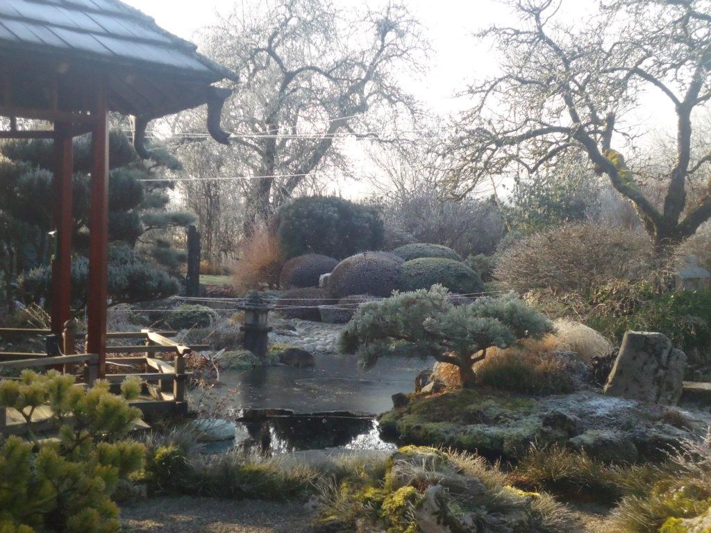 Atelier Jardin Cressia 2019 (2)