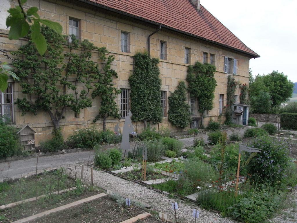 Jardin des simples à Montlebon