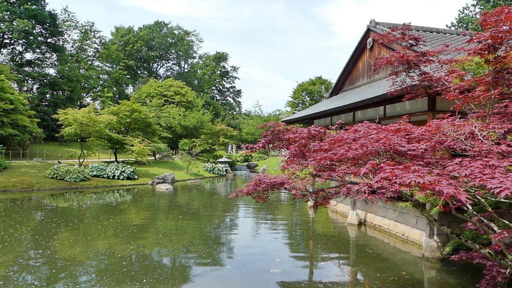 2019 Belgique Flandre Hasselt Le jardin japonais
