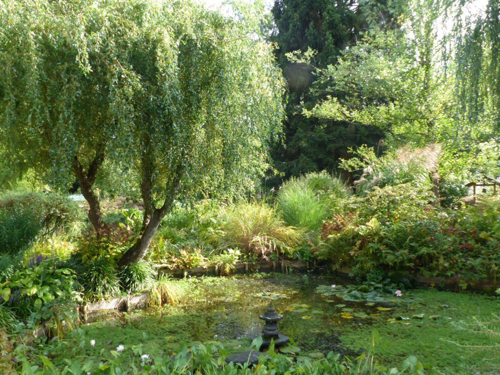 2019 Jardin de la Grenouillère